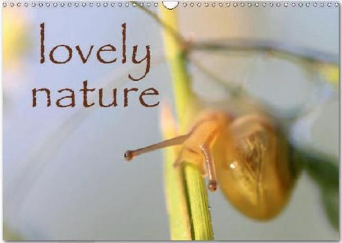 lovely_nature