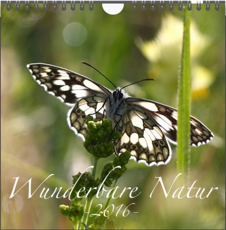 Natur_16