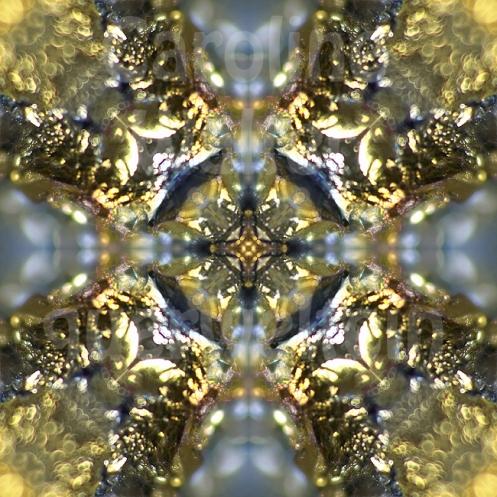 04xmandala-gold2