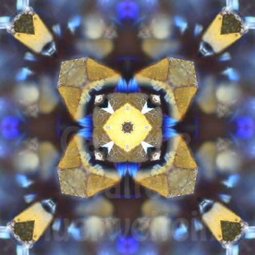 06xxdruzyblau-mandala