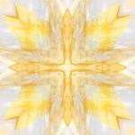 02xgolden-healer-man2