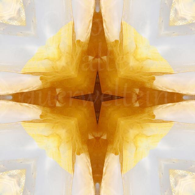 05xgolden-healer-man1