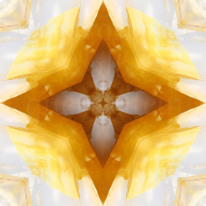 10xgolden-healer-mand1
